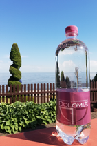 Dolomia PET ELEGANT vanduo 1000 ml.